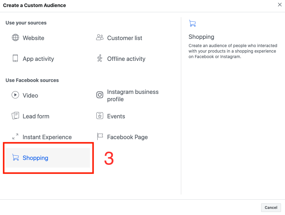 Shopping Custom Audience Facebook Ads